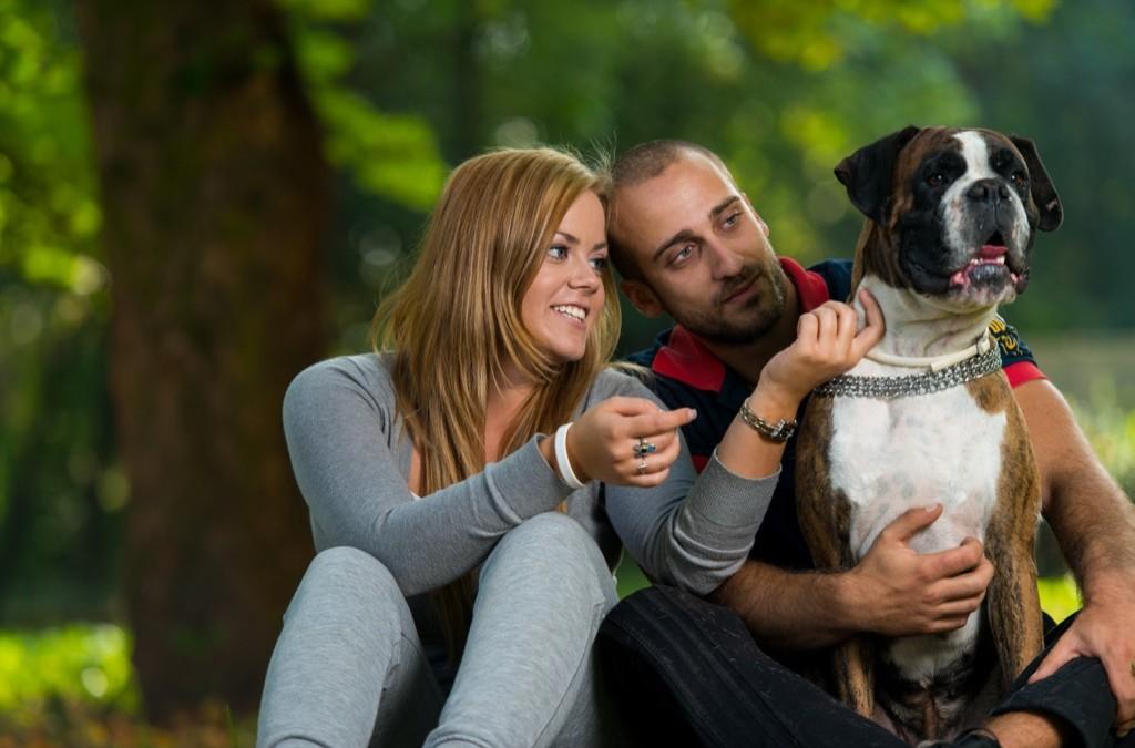 Local Vets  Optional Pet Insurance