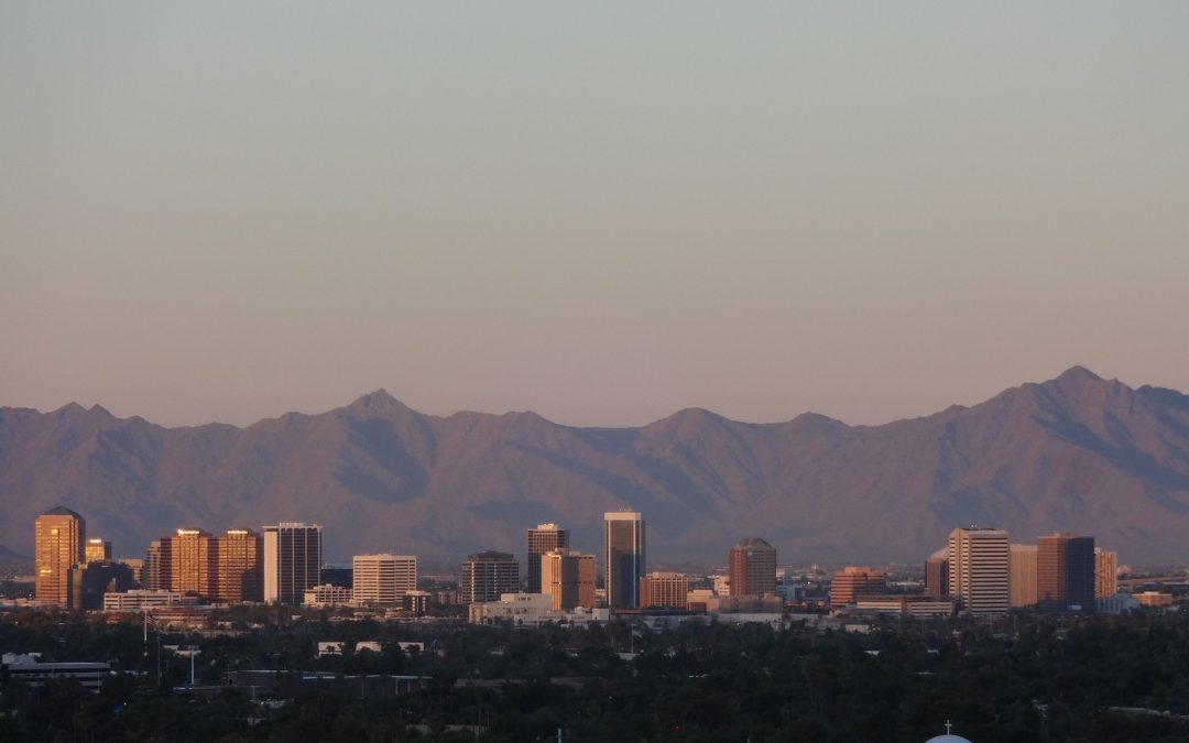 Phoenix: One of the Most Dog Friendly Cities